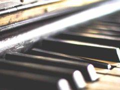 mejores musicos de latin jazz, jazz latino para escuchar y ver